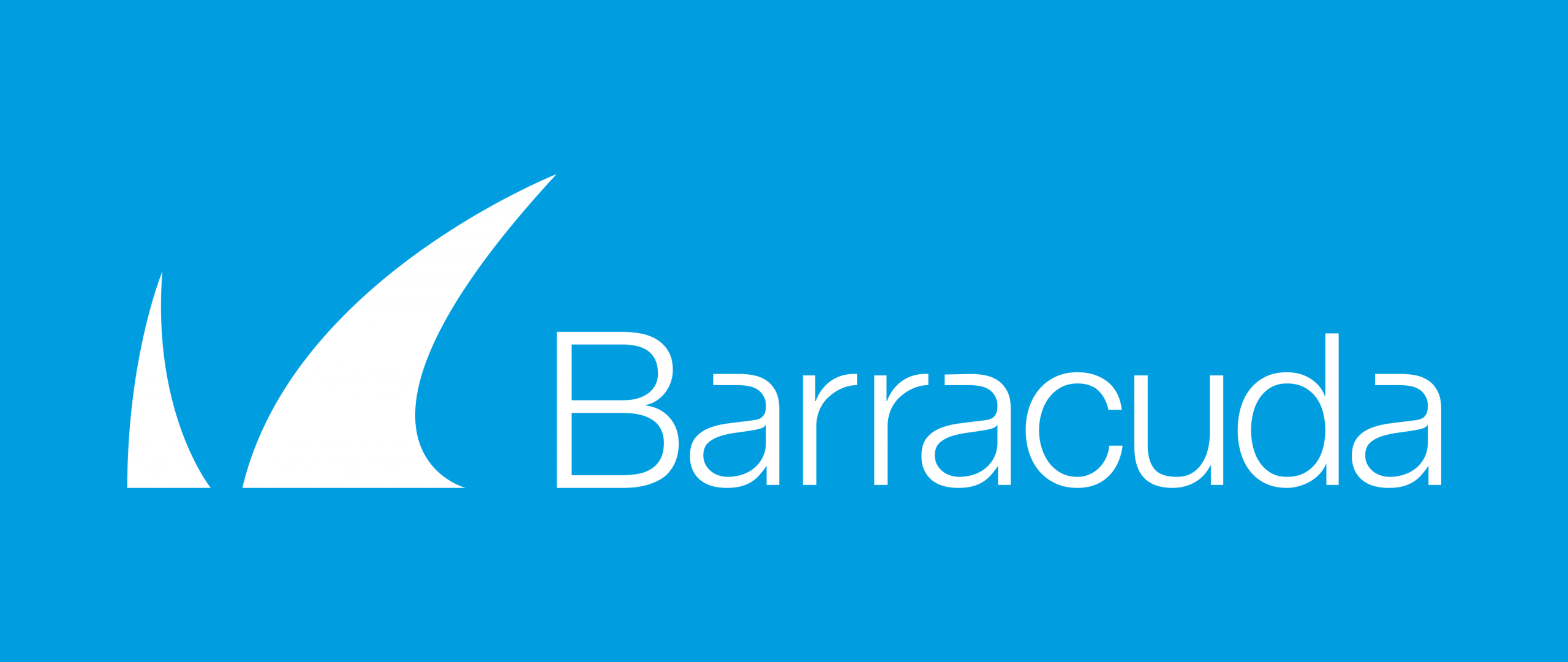 barracuda partner van braincap
